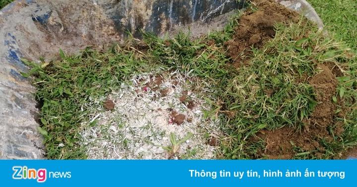 Vụ chất màu lạ ở Thiên Trường - 'HLV không yểm bùa mà chỉ cầu an lành'