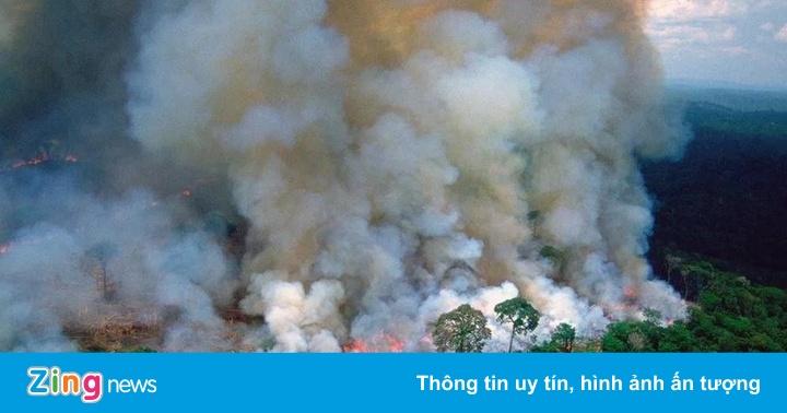 Cháy rừng Amazon - ''lá phổi'' địa cầu trước nguy cơ bị bức tử