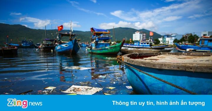 Cảng cá lớn nhất miền Trung nồng nặc mùi hôi thối