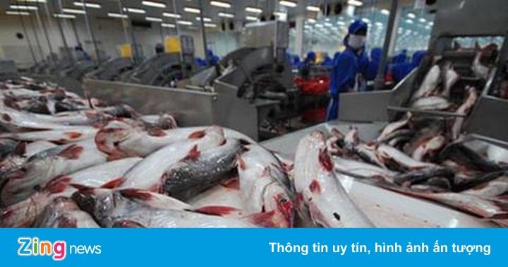 'Vua cá' Hùng Vương lỗ hơn 700 triệu đồng mỗi ngày