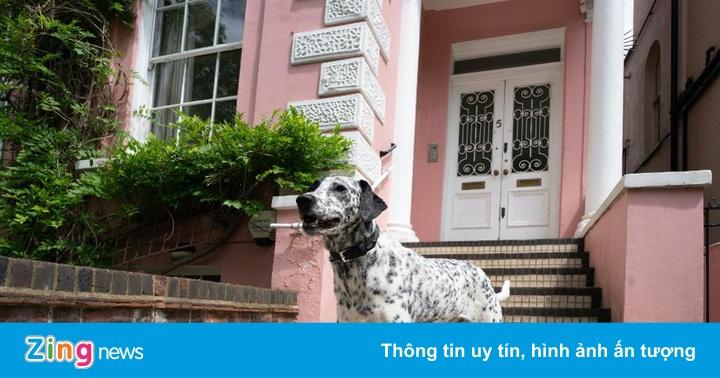 Ngôi nhà '101 chú chó đốm' giá hơn 11 triệu USD