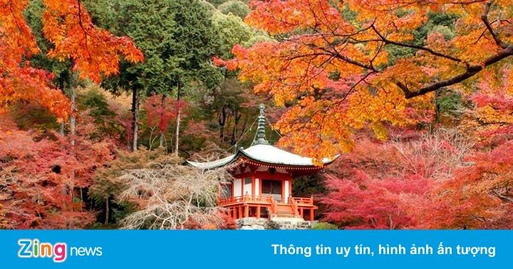 Những ngôi chùa có khung cảnh tuyệt đẹp ở Nhật Bản