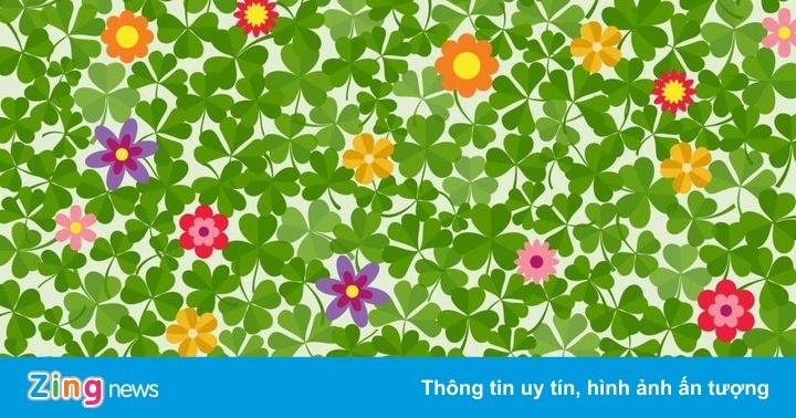 Đố bạn tìm thấy chiếc cỏ bốn lá trong bức tranh này