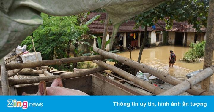 Dân rốn lũ di chuyển bàn thờ lên nóc nhà, ăn ngủ trên đê
