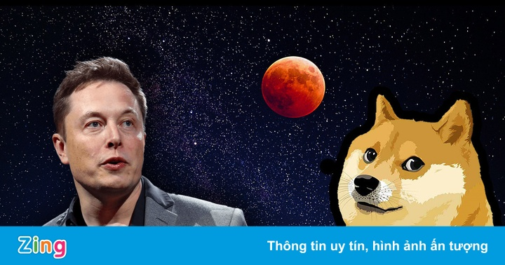 Elon Musk bị điều tra vì thổi giá Dogecoin
