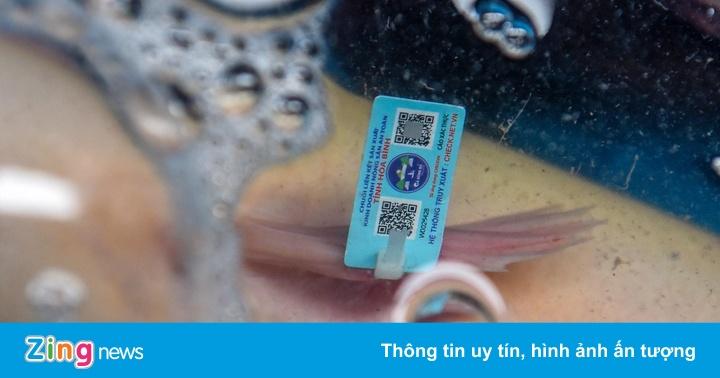 Cá sông Đà gắn tem truy xuất nguồn gốc tại hội chợ nông sản