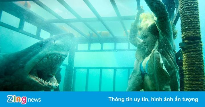 9 bộ phim cá mập đáng xem nhất trong hơn 30 năm qua - Phim chiếu rạp -  ZING.VN