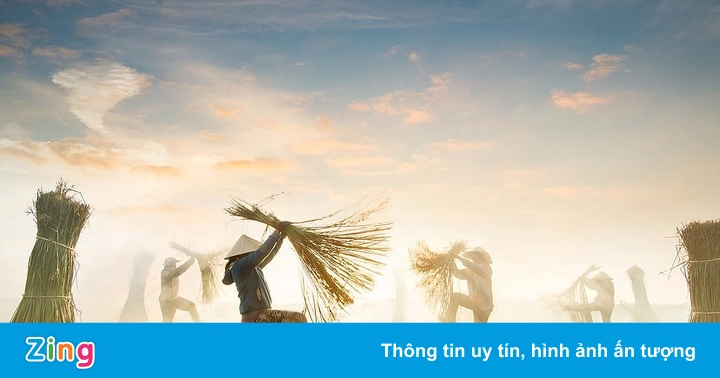Tác phẩm Việt vào top cuộc thi Ảnh đẹp 2020