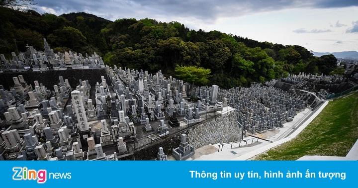 Thiếu đất chôn, người Nhật dần chuộng 'mộc táng'