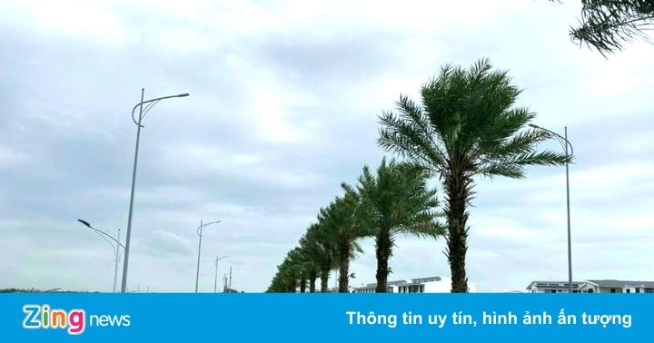 Khánh thành cầu Hải Long nối khu đô thị Ecorivers và TP Hải Dương - giá vàng 9999 hôm nay 221