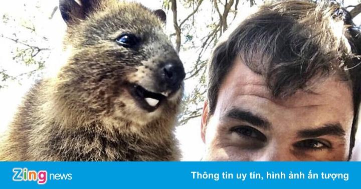 Federer hào hứng selfie cùng loài động vật hạnh phúc nhất thế giới