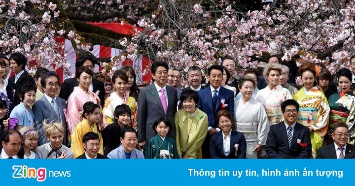 Thủ tướng Shinzo Abe lao đao vì scandal tiệc ngắm hoa anh đào