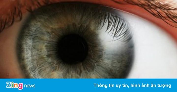 Tại sao mắt và não người thích các nội dung chạy ở 60fps? - Công nghệ -  ZING.VN